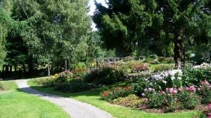 Blumen Wald