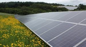 Solarpark Mehring