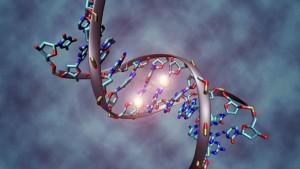 DNA Doppelhelix Methyl-Markierung