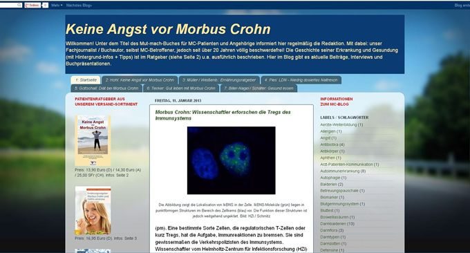 Screenshot Blog Januar 2013