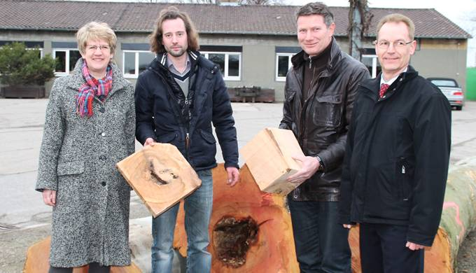 Mannheim Platanen Kunstobjekte