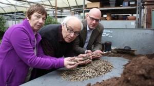 1 Million neue Energiepflanzen