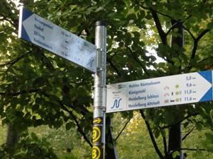 Neckarsteig Kurpfalz