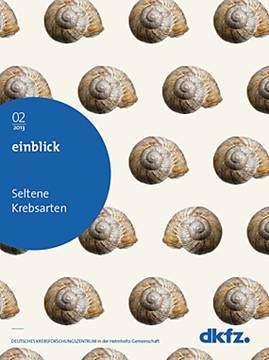 Einblick Cover 2013-02