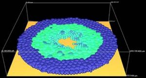 Wundheilung Simulation