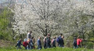 Bergstraße Kinderwanderung