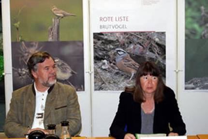 Rheinland-Pfalz Brutvögel Pressekonferenz