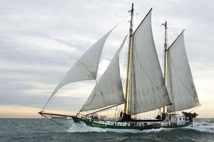 Greenpeace-Aktionsschiff kommt nach Mannheim