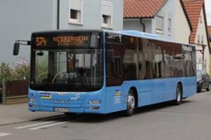 Palatina Bus