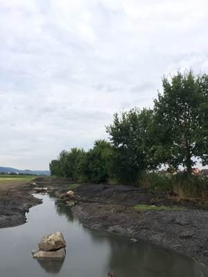 Renaturierung Mühl- und Mittelgraben