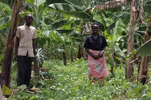 Ecofarming Ruanda