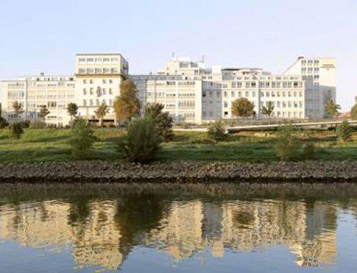 """Mannheim: """"Tag der offenen Tür"""" an TKH und St. Hedwig-Klinik"""