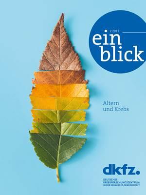 Cover Einblick