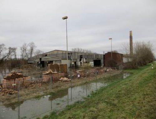 Herrenteich: BUND + NABU in Hockenheim erneuern Forderung nach Renaturierung