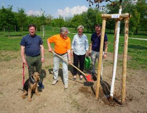 """Mannheim: Baumpflanzungen zum """"Tag des Baumes"""""""