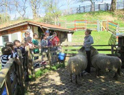 Heidelberg: BUND-Kinderprogramm startet in den Frühling