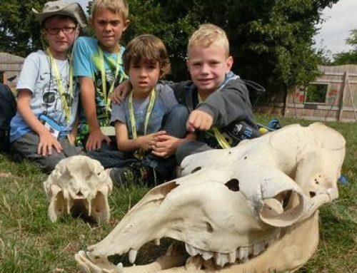Heidelberg: Ferienspaß mit der Zooschule