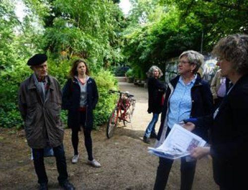 Mannheim: Innenstadtgärten werden schöner