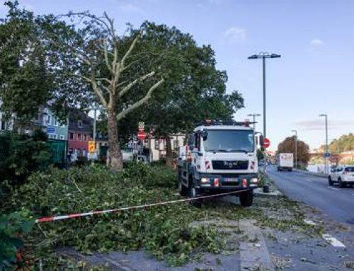 Heidelberg: Sturmschäden durch Starkregen und heftigen Wind