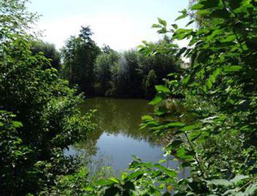 Landau: 2. Planungsworkshop zur Entwicklung des Bereichs Hordtweiher