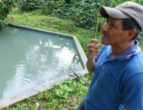 Heidelberg / Nicaragua: Klimaprojekt für Kaffeebauern