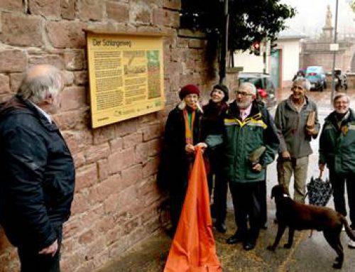 Heidelberg: Naturparktafel als Einstieg zum Schlangenweg