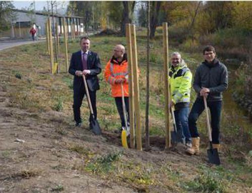 Sinsheim: Hochwasserschutzmaßnahmen am Ilvesbach sind fast abgeschlossen