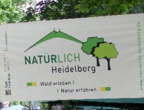 """Veranstaltungsreihe """"Natürlich Heidelberg"""" im Dezember und Januar"""