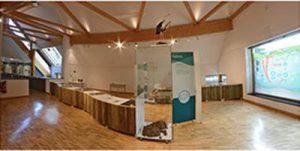 Ausstellung Pfalzmuseum für Naturkunde