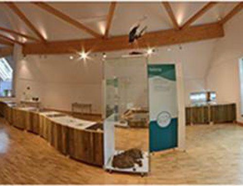 Bad Dürkheim: Zwischen den Jahren ins Naturkundemuseum