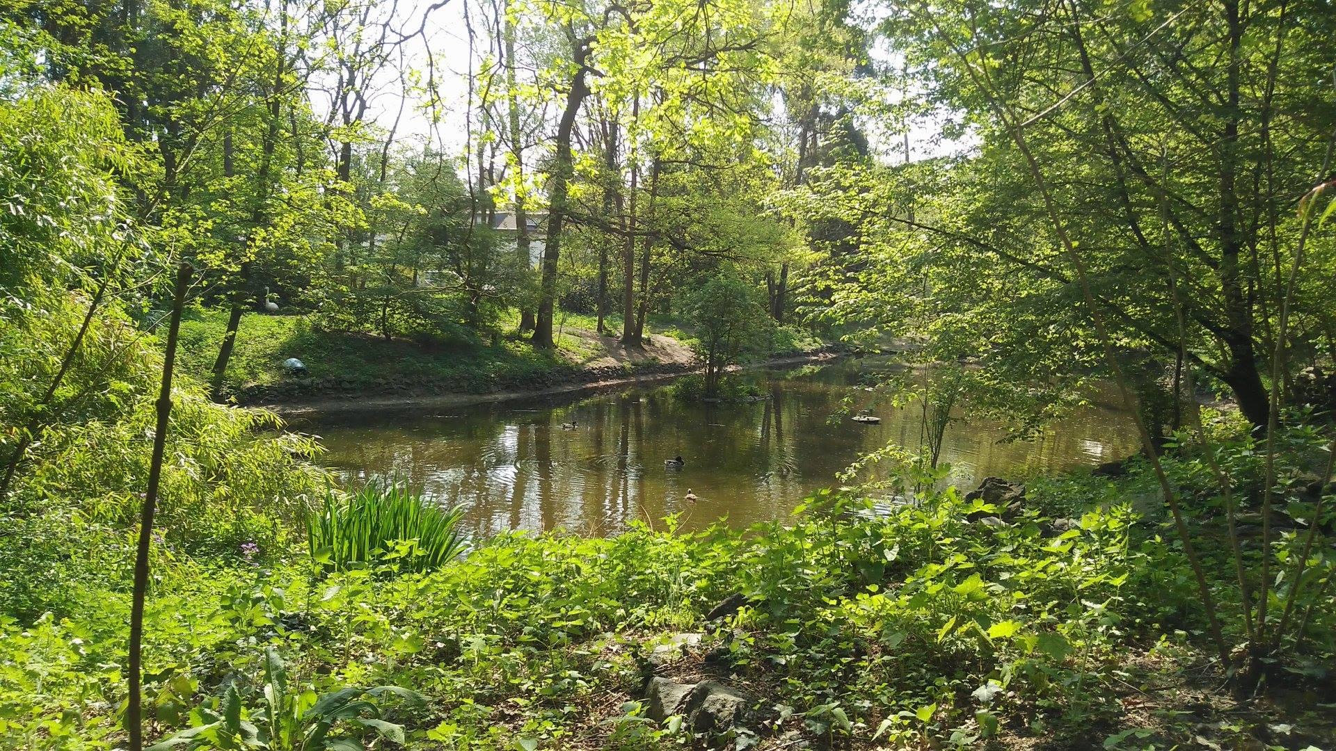 """Vogelpark """"Birkengarten"""""""