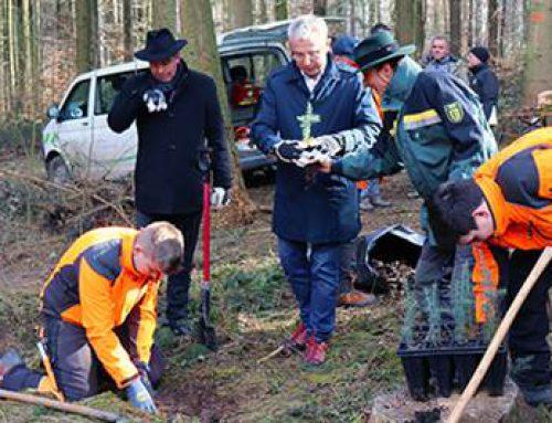 Rhein-Neckar-Kreis: Wälder an das Klima der Zukunft anpassen