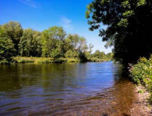 Hessen: Spurenstoffe bereits an der Quelle beseitigen