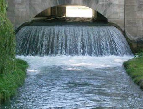 Baden-Württemberg: Klimawandel und Wasserversorgung – Land erarbeitet Masterplan