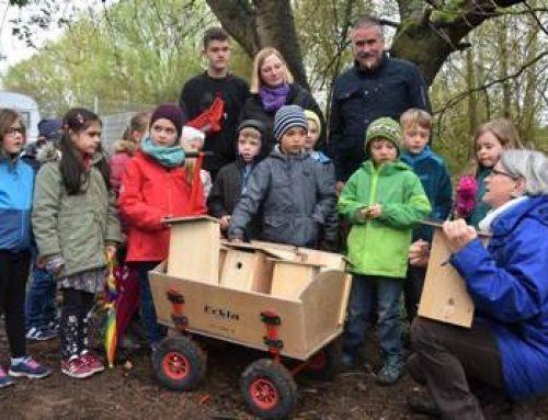 Landau: Stadt, NABU und Grundschule Süd hängen Vogel- und Fledermausnistkästen auf