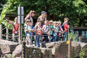 Pfingstferien Zooschule Heidelbrg