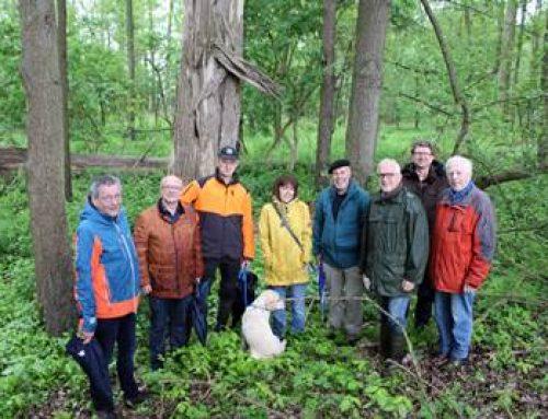 Bensheim: Wald an der Erlache steht unter besonderem Schutz