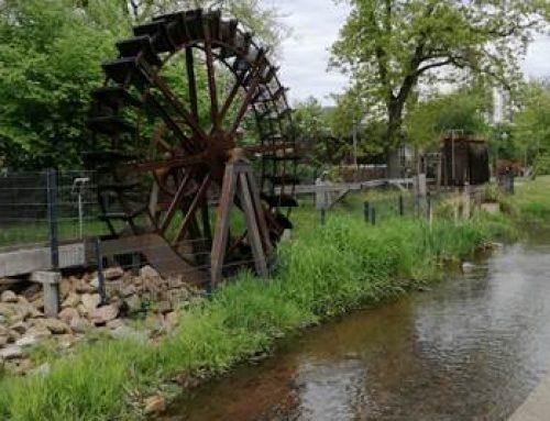Hessen: Grundwasservorkommen ist stabil, sparsamer Wasserverbrauch trotzdem wichtig