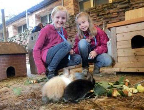 Heidelberg: Haustier-Workshop der Zooschule