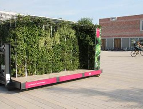 Heidelberg: Landschafts- und Forstamt testet mobile Pflanzen-Plattform