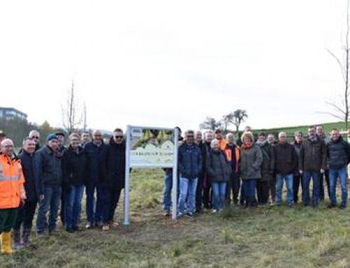 """Projekt """"1.250 Bäume für Sinsheim"""" gestartet"""