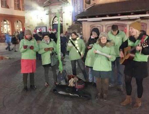 Heidelberg: Greenpeace macht auf Pestizide in Weihnachtsbäumen aufmerksam