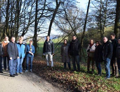 Sinsheim: Stadt und Naturschutzverbände informierten über Amphibienschutz