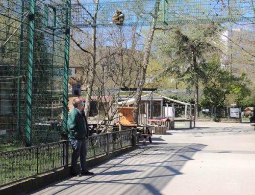 Zoos benötigen 100 Millionen Euro Soforthilfe – auch Zoo Landau sehr besorgt