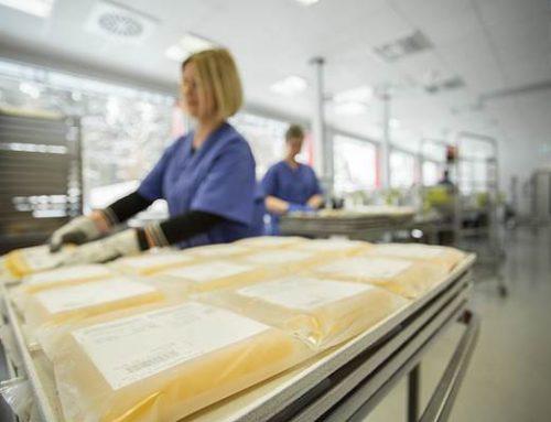 Mannheim: Plasma für COVID-Patienten – UMM-Studie kommt gut voran