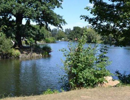 Hessen: Mit Nitrat belastete Gebiete werden neu ausgewiesen