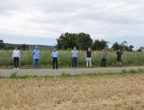 Sinsheim: Ausgleichsmaßnahme für Neubau der Firma Gebhardt