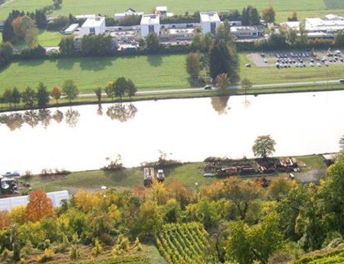 Baden-Württemberg: Wassertemperaturvorhersage ab sofort online