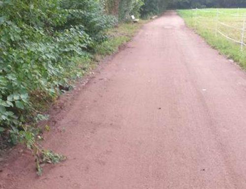 Landau: Wieder freie Fahrt auf dem Queichtalradweg