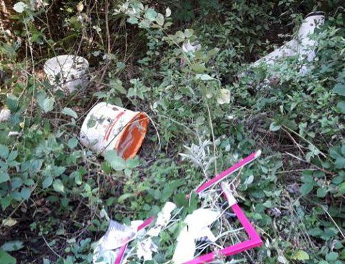 Sinsheim: Erneut illegale Müllentsorgung